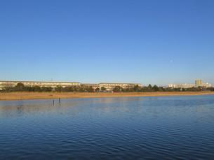谷津干潟の写真素材 [FYI00200747]
