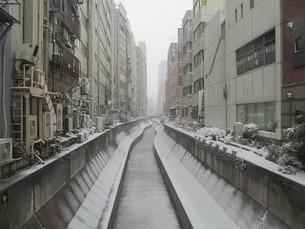 大雪の渋谷川の写真素材 [FYI00200749]