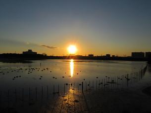 谷津干潟の夕陽の写真素材 [FYI00200750]