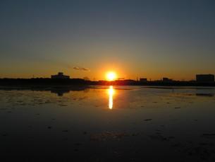 夕方の谷津干潟の写真素材 [FYI00200758]