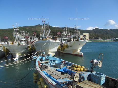 宮城県 女川漁港の写真素材 [FYI00200767]