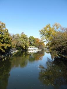 武蔵関公園の秋の写真素材 [FYI00200831]