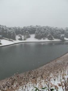 雪の桜田濠の写真素材 [FYI00200845]