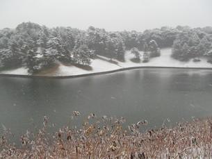 雪の桜田濠の写真素材 [FYI00200860]