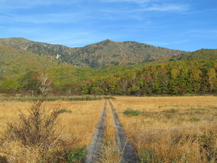 八幡平の御在所湿原の写真素材 [FYI00200896]