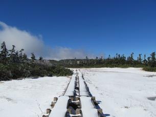 八幡平 雪の木道の写真素材 [FYI00200920]