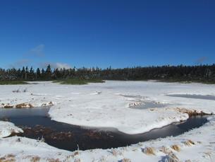 雪の八幡平湿原の写真素材 [FYI00200923]