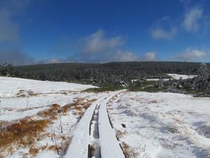 八幡平 雪の木道の写真素材 [FYI00200933]