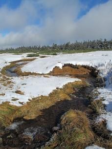 雪の八幡平湿原の写真素材 [FYI00200934]