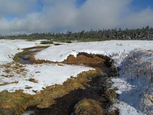 雪の八幡平湿原の写真素材 [FYI00200935]