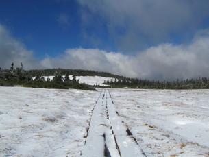 八幡平 雪の木道の写真素材 [FYI00200939]