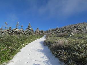 雪の八幡平 遊歩道の写真素材 [FYI00200940]