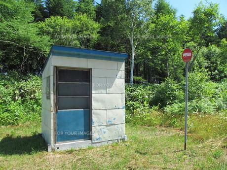 森とバス停の写真素材 [FYI00200951]