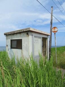 草地とバス停の写真素材 [FYI00201038]
