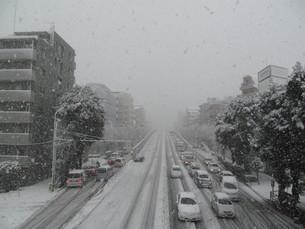 雪の環七通りの写真素材 [FYI00201044]