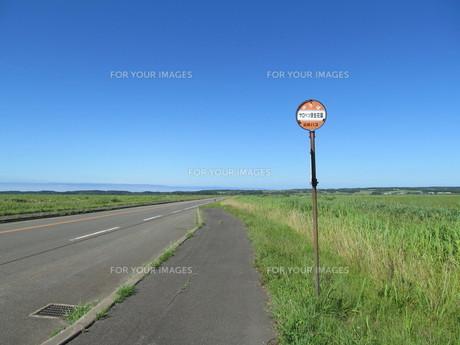 サロベツ原野とバス停の写真素材 [FYI00201092]