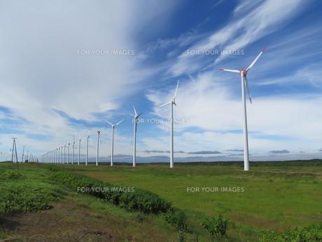 北海道の風力発電所の素材 [FYI00201108]
