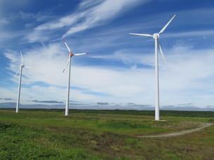 北海道の風力発電所の素材 [FYI00201115]