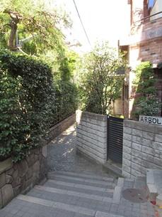 神楽坂の兵庫横丁の写真素材 [FYI00201236]