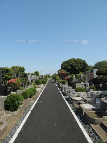 八柱霊園の写真素材 [FYI00201239]