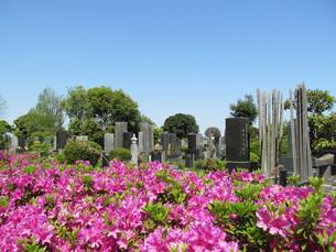 八柱霊園の写真素材 [FYI00201252]
