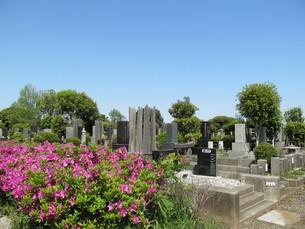 八柱霊園の写真素材 [FYI00201256]