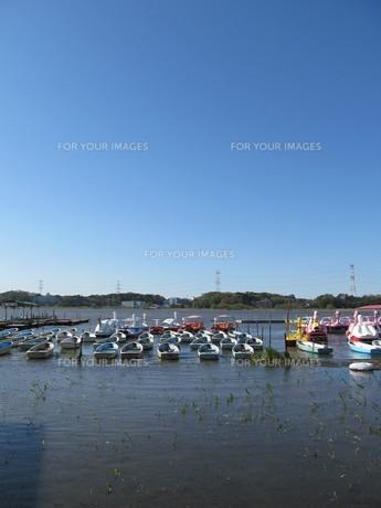 手賀沼とボートの写真素材 [FYI00201274]