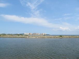 葛西海浜公園の東なぎさの写真素材 [FYI00201285]