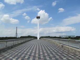 葛西なぎさ橋の写真素材 [FYI00201289]