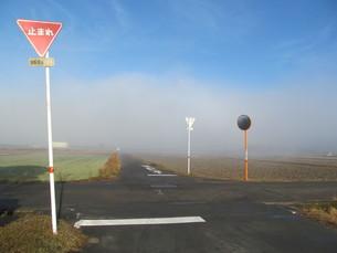 田舎道の十字路の写真素材 [FYI00201291]