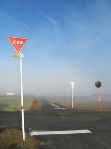 田舎道の十字路の写真素材 [FYI00201295]