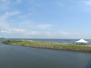 葛西海浜公園の西なぎさの写真素材 [FYI00201299]