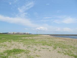葛西海浜公園の西なぎさの写真素材 [FYI00201301]