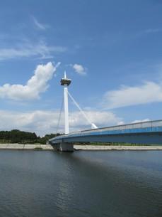 東京湾の葛西なぎさ橋の写真素材 [FYI00201309]