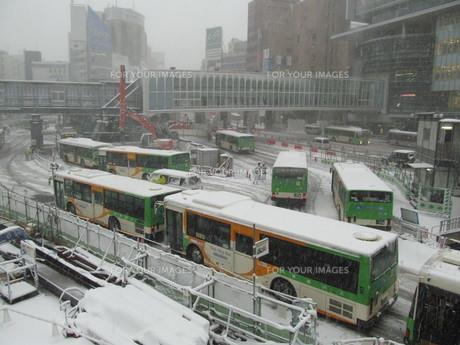 雪の渋谷駅東口バスターミナルの写真素材 [FYI00201379]