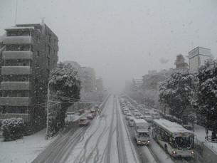 雪の環七通りの写真素材 [FYI00201582]