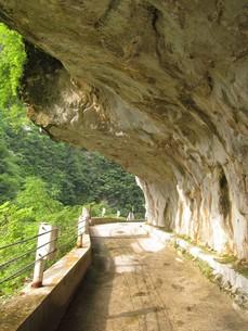 黒部峡谷の人喰岩の写真素材 [FYI00201880]