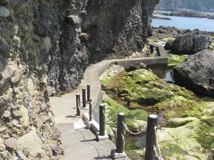 伊豆半島の遊歩道の写真素材 [FYI00201909]