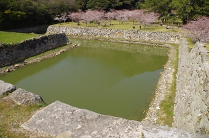 萩城の濠の素材 [FYI00201972]