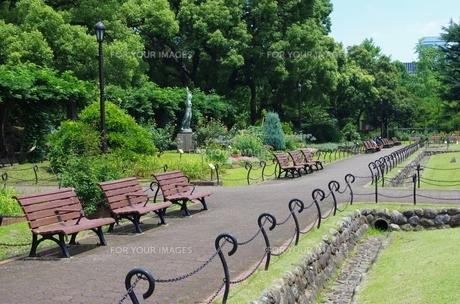 公園とベンチの素材 [FYI00201991]