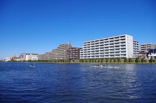 戸田公園の池の素材 [FYI00202001]