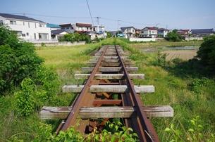 廃線の線路の写真素材 [FYI00202023]