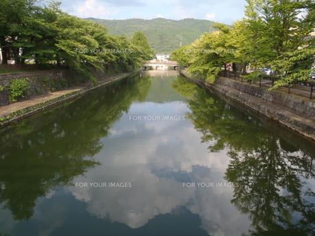 京都の疎水の写真素材 [FYI00202179]