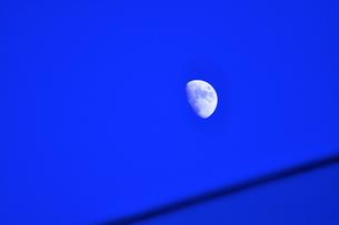 上弦の月の写真素材 [FYI00202316]