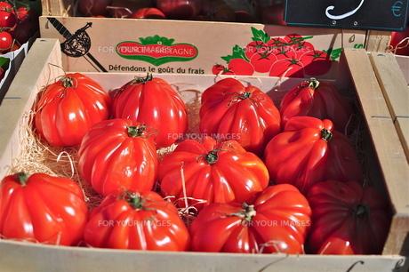 フランス マルシェのトマトの写真素材 [FYI00202343]