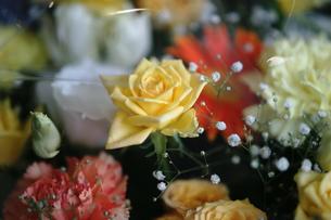 花束の写真素材 [FYI00202377]