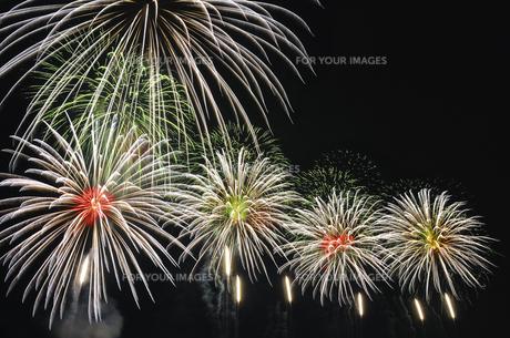 花火の写真素材 [FYI00202699]