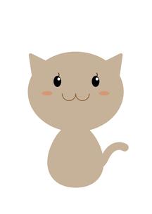 ネコの案内(みつめる)の写真素材 [FYI00202778]