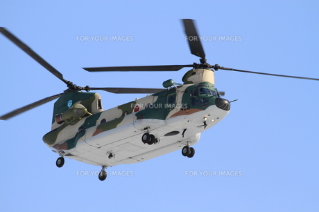 CH-47チヌークの写真素材 [FYI00202830]