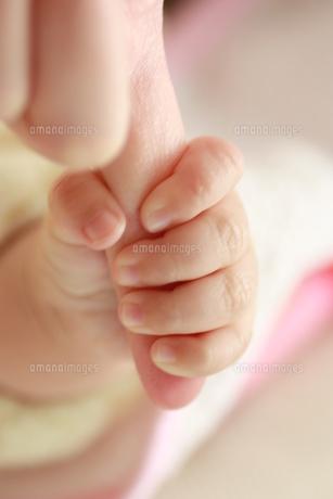 赤ちゃんの手の写真素材 [FYI00203141]